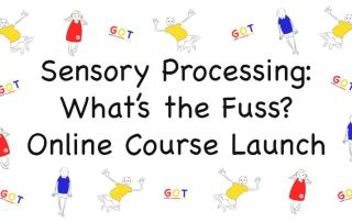 Sensory Processing Disorder Course Launch