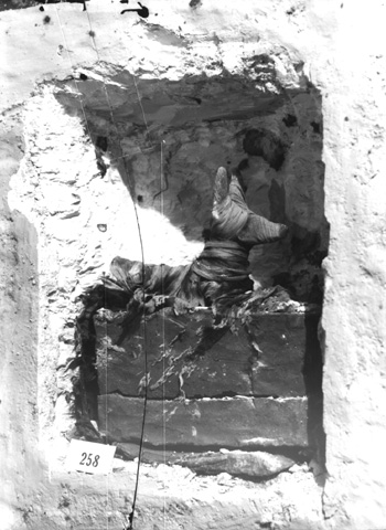 Niche containing recumbent figure of Anubis; Burton photograph: p0884