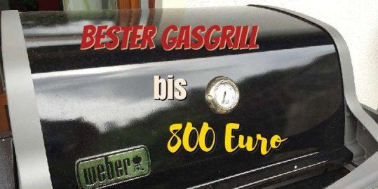 Der beste Gasgrill unter 800 €