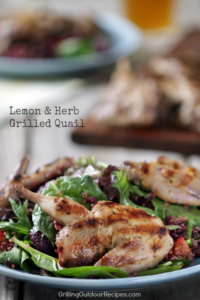 lemon-and-herb-grilled-quail-v