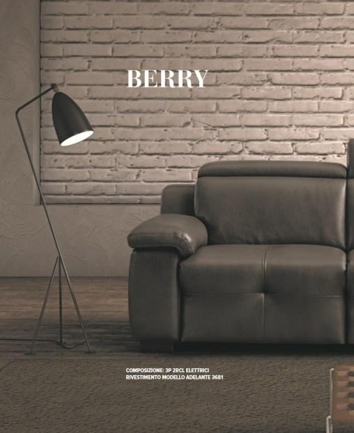 scheda_berry-0