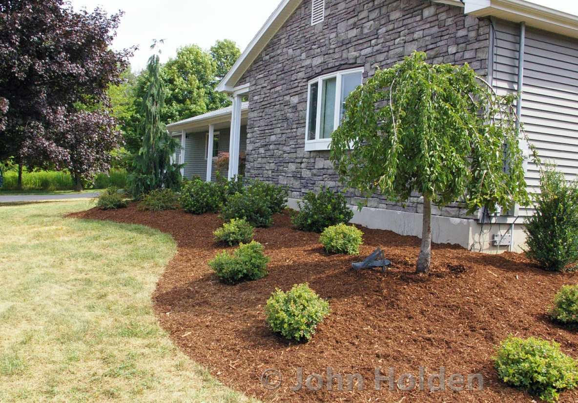 How To Prepare Your Beds For A Landscape Planting Grillo Services