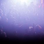 kmfdm, chant, ravens moreland, the regent, the regent theater, regent theater, los angeles, music, melissa castro, m-castro, m-castro photography, lifestyle, grimygoods, heavy metal, techno, post modern, hamburg, germany, chicago