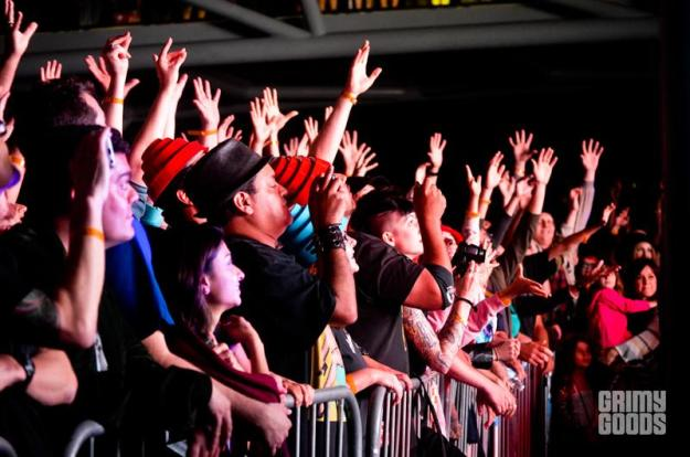 concert crowd photos