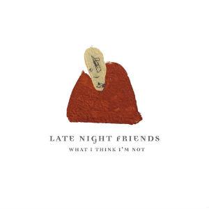 Late Night Friends Album Cover Art