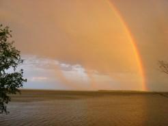 rainbow_0