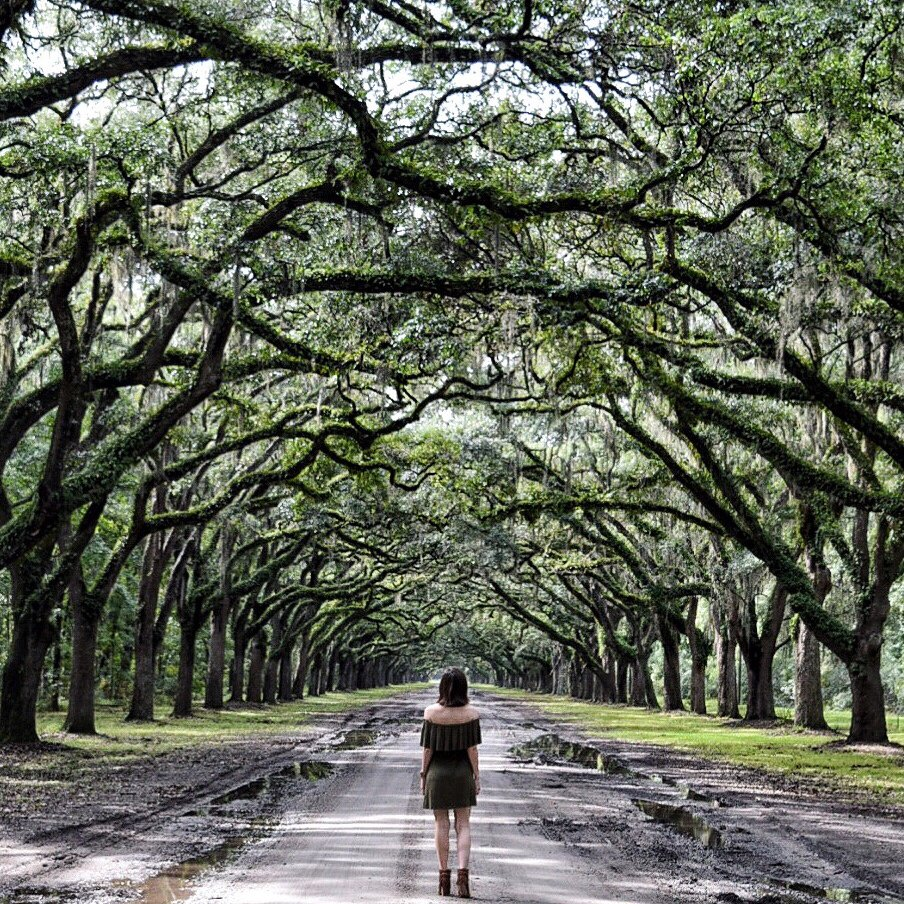 THE MOST PHOTO WORTHY SPOTS IN SAVANNAH