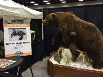 Bob Steed SCI World Record Bear