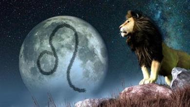 aslan-burcu-erkeği