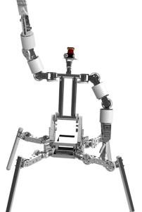 Cog-Burn 3D Model