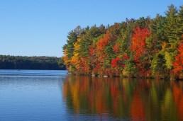 fall-187779_1280