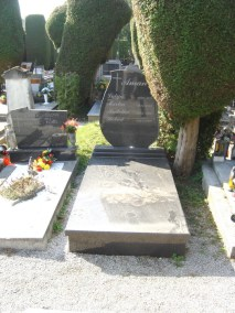 Nadgrobni spomenici (86)