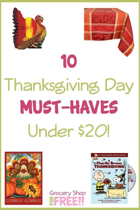 10 Thanksgiving Day Must Haves Under $20! pin