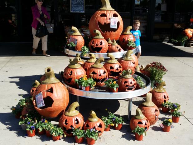 Market Street Pumpkin Display