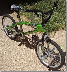 Bear's Bike