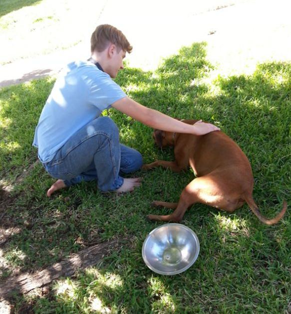 ALPO® Makes Molly A Happy Dog!