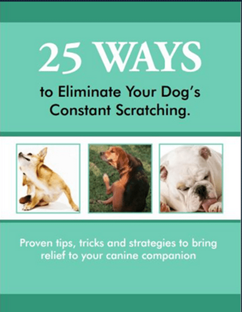 FREE 25 Ways To Eliminate Your Dog's Constant Scratching eBook!