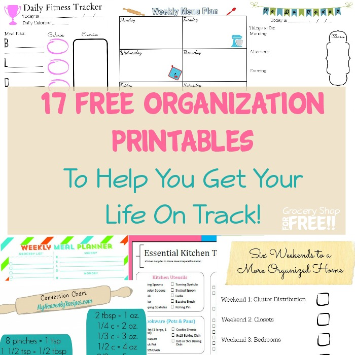 17 FREE Organization Printables!