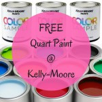 FREE Kelly-Moore Quart Paint Sample!