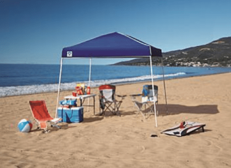Z-Shade 10' x 10' Instant Canopy Just $39.99! Down From $80!