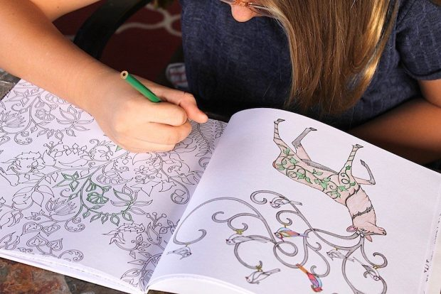 Adult Coloring Book & 24 Colored Pencils Only $10.99!