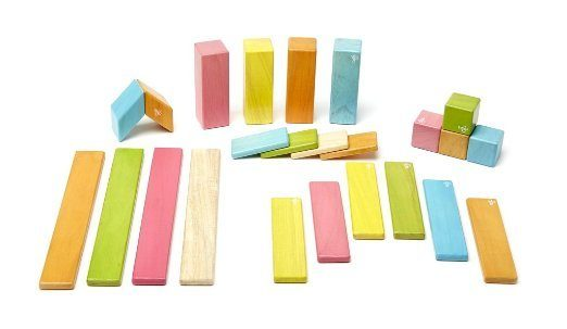 Save 40% Select Tegu Magnetic Wooden Toys - 24 Pc Set Just $39 (Was $65)