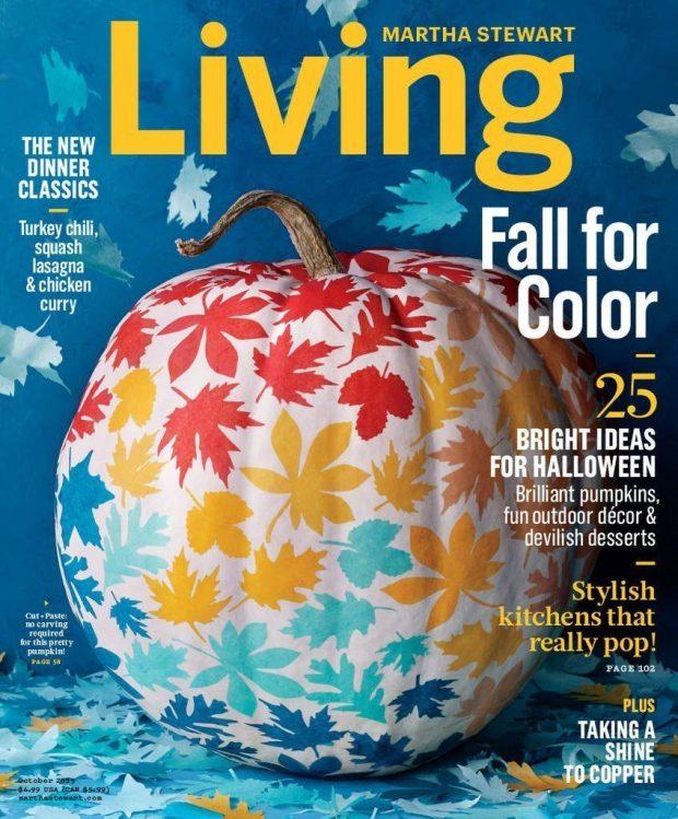 Martha Stewart Living Just $5!