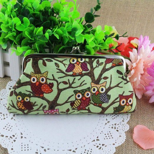 CUTE Owl Canvas Clutch ONLY $2.70 + FREE Shipping!