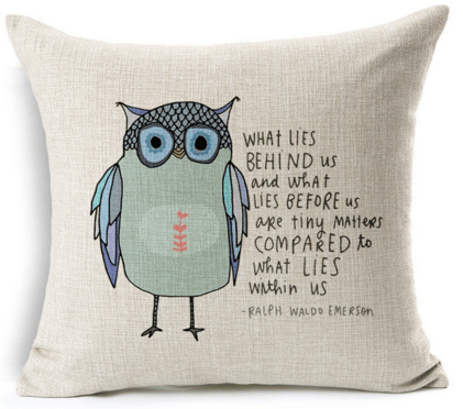 Decorbox Cotton Decorative Owl Sayings Pillowcase Just $5 Down From $39!