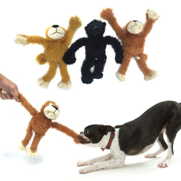 Monkey Squeaker Dog Toys - Set Of 3 - for Only $9.99 Plus FREE Shipping!