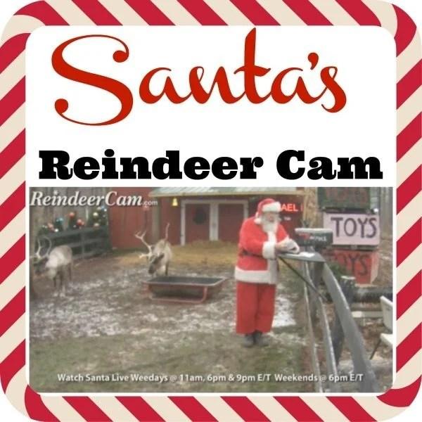 santa's reindeer cam gsff