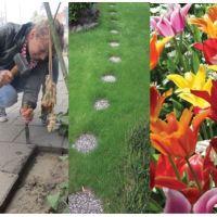 Dag van de duurzaamheid: 10 tips om groen te doen in de tuin