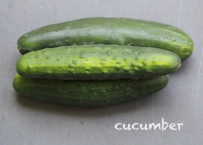 SFC_cucumber_labeled