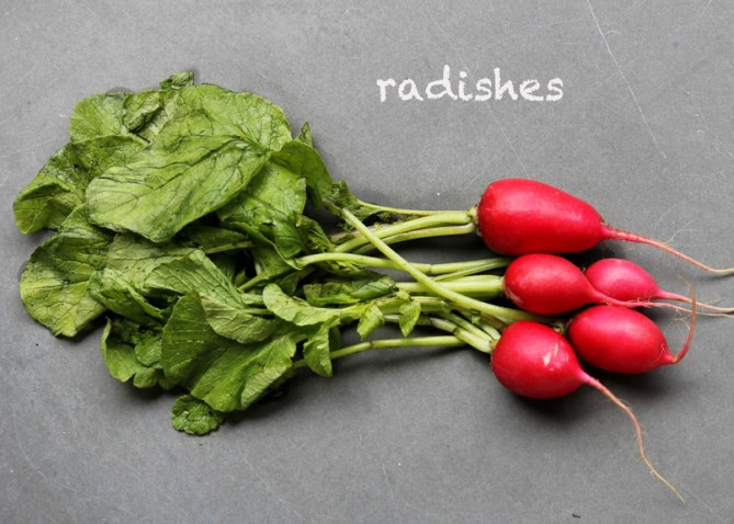 SFC_radish_labeled
