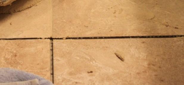 new tile mortar