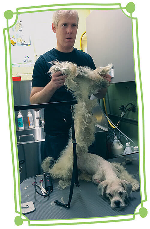 Imhof holding shaved coat of matted dog