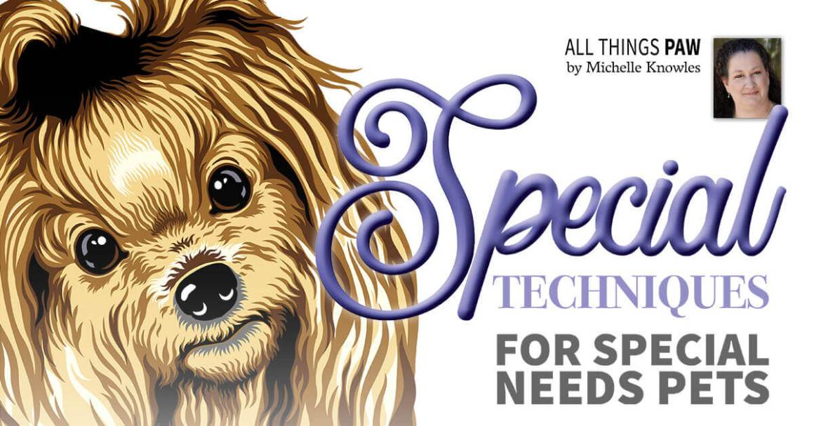 Special Techniques for Special Needs Pets