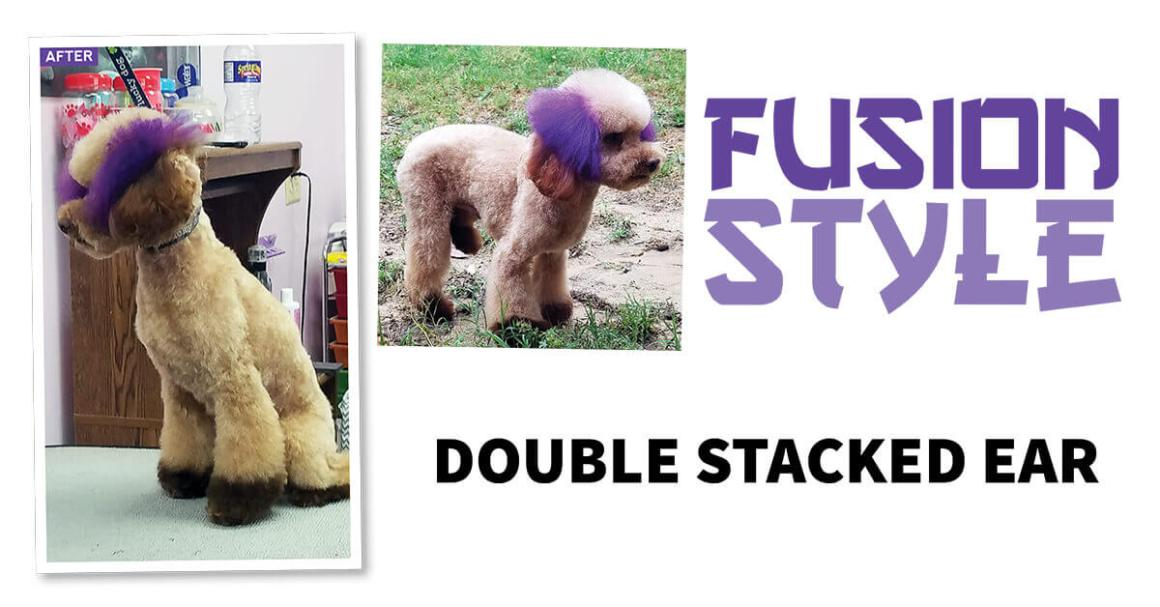Fusion Style: Double Stacked Ear
