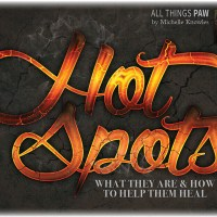 Hot Spots: What They Are & How to Help Them Heal