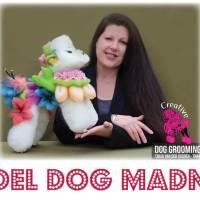 Model Dog Madness