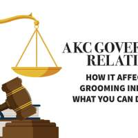 AKC Government Relations: How It Affects the Grooming Industry & What You Can Do to Help