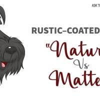 """Rustic-Coated Breeds: """"Natural"""" vs Matted"""
