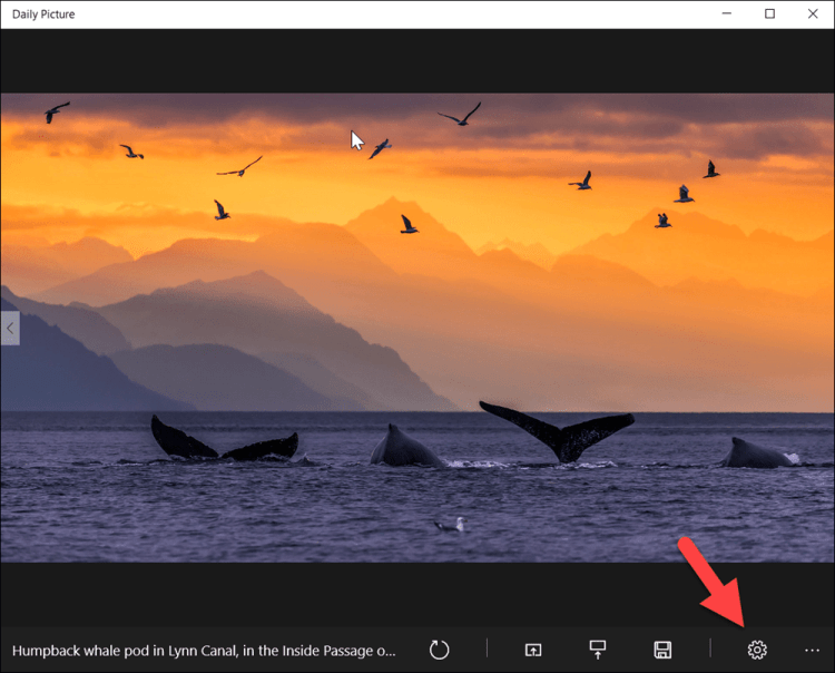 Set Your Windows 10 Lock Screen and Wallpaper to Bing Daily Images