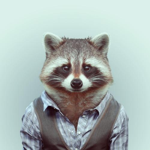 Zoo Portraits | Yago Partal | GROSSARTIG