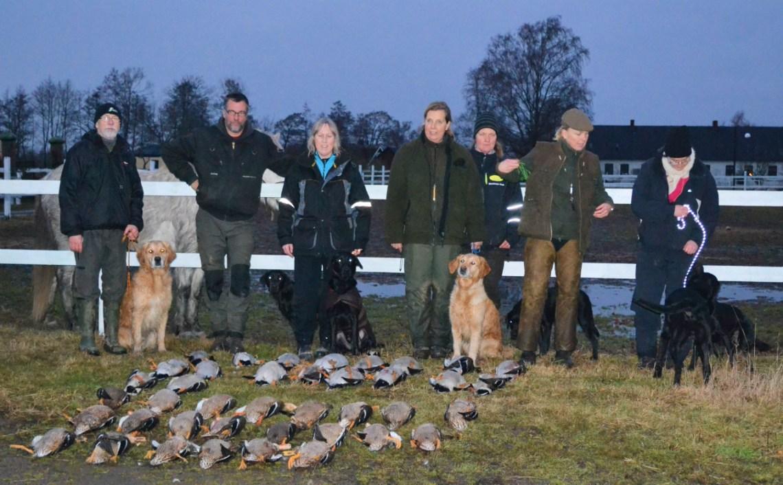 Folk med sina hundar på jaktrapporteringskurs