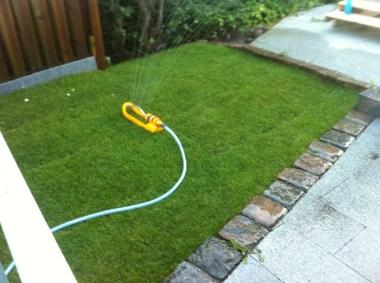 gräsmatta som bevattnas