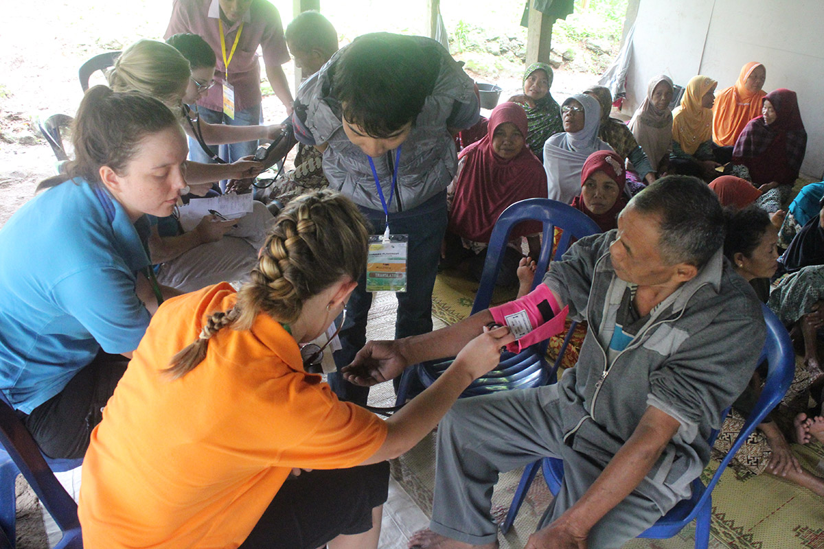 Primary Healthcare and Nursing in Indonesia