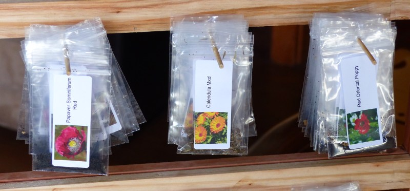 Seed packs hanging 1024x476 Turning Gardening Into Gold Harvesting Seeds.