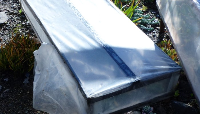 RBG Frost cover 700x400 Ruth Bancrofts Succulent Garden