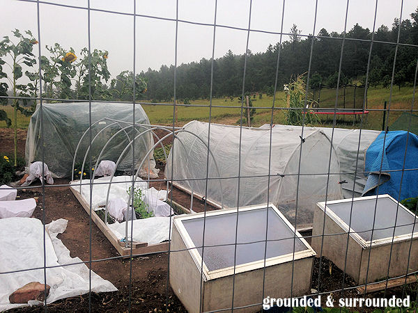 Shop your local RE-Store Outlet for wood scraps, items to re-purpose, and old windows. We found a couple of windows for $2.50 each last year and made cold frames out of them. I have also seen people make planters out of old bath tubs….. https://www.groundedandsurrounded.com/frugal-diy-garden-articles/